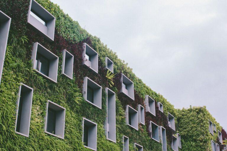 architettura ecosostenibile